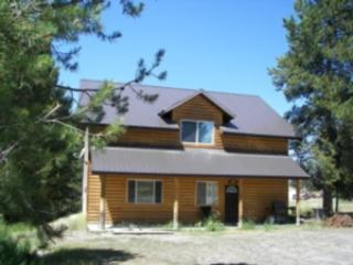 SLEEPY BEAR DOWN ~ 2 BEDROOM - Image 1 - Island Park - rentals