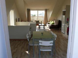Two bedroom penthouse apartment - Reykjavik vacation rentals