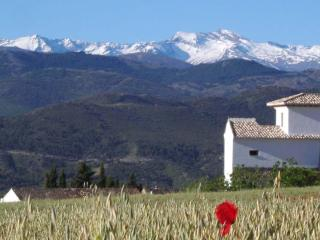 New village house for 6, with pool, 30 min Granada - Diezma vacation rentals