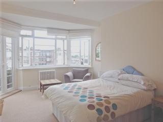 Central London Luxury Penthouse Apartment Sleeps 5 - London vacation rentals