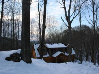 Opulent Eagles Nest Home!! Come visit this winter! - Banner Elk vacation rentals