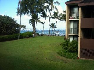 Ocean front Oahu -  2 bedroom, 2 bath condominium - Haleiwa vacation rentals