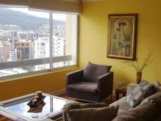 Beautiful Centrally Located Apartment in Quito - Quito vacation rentals