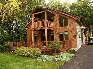 NIAGARA RIVER CHALET Near Niagara Falls  On  River - Niagara Falls vacation rentals