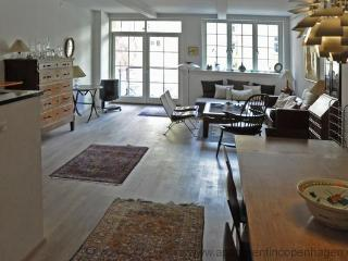 Nyhavn - Stunning Apartment Top Location - 4 - Copenhagen vacation rentals