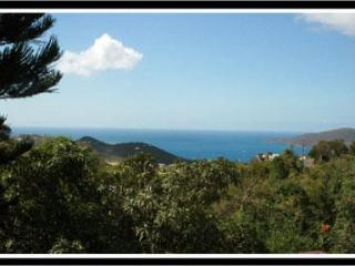 You CAN AFFORD ELEGANCE at Wintberg Place. - Saint Thomas vacation rentals