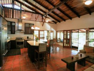 Luxury Beachfront Estate, Maid, and Wifi Included! - Santa Teresa vacation rentals