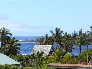 Kapoho Bay View Home - World vacation rentals