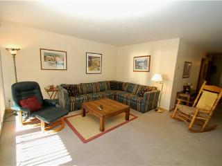 Ideal 2 Bedroom/2 Bathroom Condo in Keystone (Ski Run 201) - Keystone vacation rentals