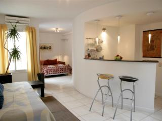 Contemporary design suite in Mendoza downtown - Province of Mendoza vacation rentals