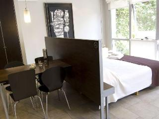 New Studio in Mendoza Midtown - Fully furnished - Cuyo vacation rentals