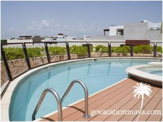 Heliko 205, Playa del Carmen, Coco Beach - Playa del Carmen vacation rentals