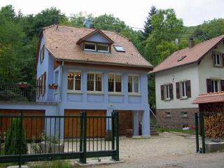 Luxury house in Alsace - sauna, hot-tub & log-fire - Alsace-Lorraine vacation rentals