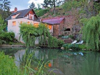 DISCOUNTS! Riverfront House in Old-World Burgundy - Semur-en-Auxois vacation rentals