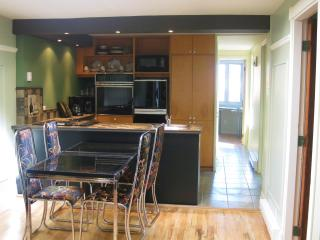 1.5MILE FROM OLD MONTREAL NICE 3BR -TREE TOP DECK - Montreal vacation rentals