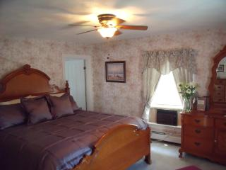 Thames House Guest House-Rose Suite - Newport vacation rentals