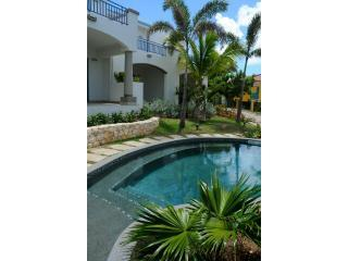 Pool - Blue Pelican Vacation Rentals - Pelican Key - rentals