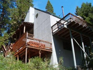 Contemporary Style Cabin with Spa, WiFi, 50% Off* - Cold Springs vacation rentals