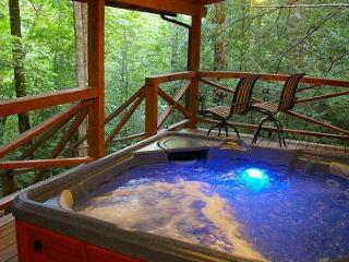 Secluded Log Cabins with Hot Tub Near Chimney Rock - Marion vacation rentals