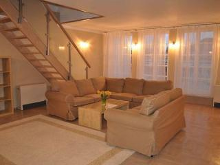 Luxurious double level penthouse for you! - Krakow vacation rentals