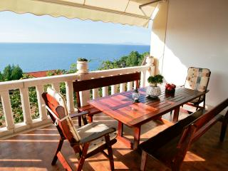 Villa Perka-tranquil spot in beautiful setting - Sveta Nedjelja vacation rentals