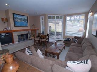 DEERBROOK C5 - Snowmass Village vacation rentals