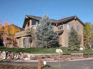 LAVA HOME - Snowmass Village vacation rentals