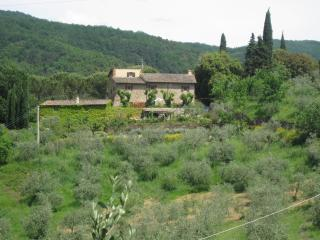 Le Valle - Exquisite 16th Century stone farmhouse - Strada in Chianti vacation rentals
