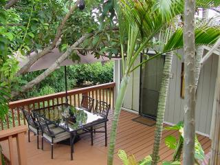 Studio Cottage~Private Jacuzzi~7th NIGHT FREE SEPT - Lihue vacation rentals
