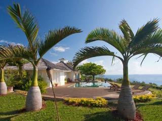 Bolt House Estate - Exquisite, Private, Luxurious - Jamaica vacation rentals
