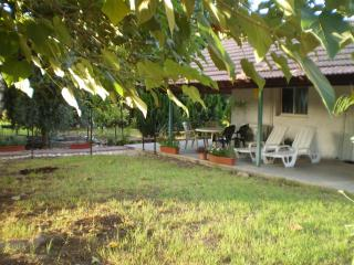 At Our Yard - Vacation Apartment in upper Galilee - Galilee vacation rentals