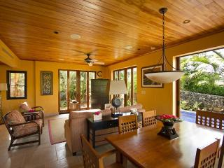 Exquisite Tamarindo Preserve Home with Beach Club - Tamarindo vacation rentals