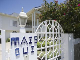 Experience the REAL Jamaica at Mais Oui Villa! - Discovery Bay vacation rentals