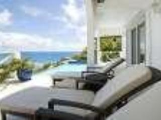 Enjoy your favourite Cocktails by the pool - Luxury Villa - Saint Martin-Sint Maarten - rentals