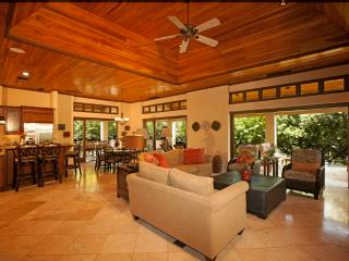 Luxurious Beach Club Penthouse - Tamarindo vacation rentals