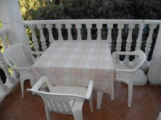 2642 A4(4) - Zaton (Zadar) - Northern Dalmatia vacation rentals