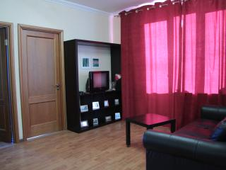 Olympiyskiy Apartment - Central Russia vacation rentals