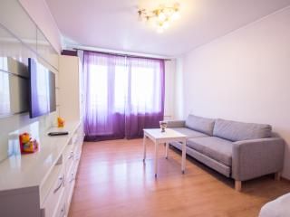 Tretiakov Gallery Apt - Moscow vacation rentals