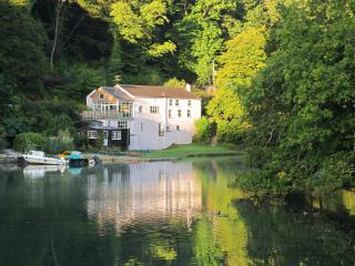 The Old Sawmills - Fowey vacation rentals