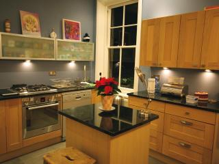 Elegant and stylish 2 bed apartment Islington - Devon vacation rentals