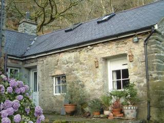 Bwthyn y Gilfach - Romantic Retreat in Snowdonia! - Snowdonia National Park Area vacation rentals
