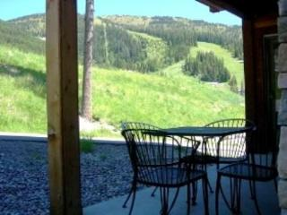 Luxury Condo!  Patio/Views/Hottub, nr Glacier Park - Whitefish vacation rentals