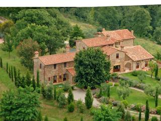 Podere Baiocco / SEASON 2015 LAST WEEKS AVAILABLE - Chiusi vacation rentals