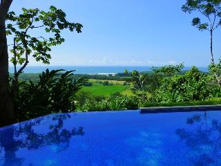 Luxury, Views to Die for and On-site concierge! - Dominical vacation rentals