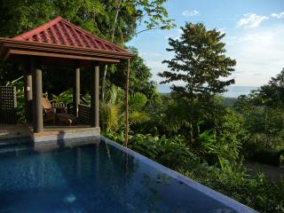 Luxury, Views, on-site Concierge in Dominical - Dominical vacation rentals