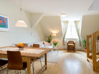 Charming top floor apartment with terrace in the centre of Vienna - Vienna vacation rentals