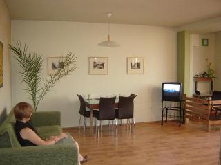 Ararat View Apartment - Armenia vacation rentals