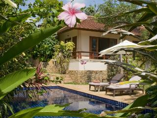 Samui Island Villas - Villa 56 (2 Bedroom Option) - Koh Samui vacation rentals