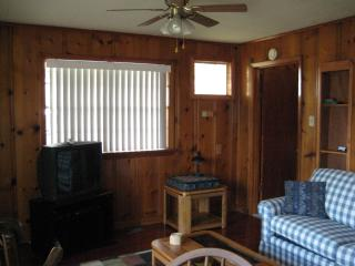 Little Red Cabin on Lake Hamilton - Hot Springs vacation rentals