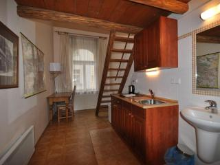 Best Price - Location, Historic Center, Studio Apt - Prague vacation rentals